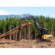 Услуги по лесозаготовительным работам (заготовка, трелевка, подвозка) фото