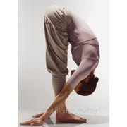 Абонемент хатха-йога утро 4 занятия (1 раз в неделю) Лошица (Игуменский тракт,16) фото