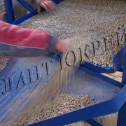 Производство гранул из соломы фото
