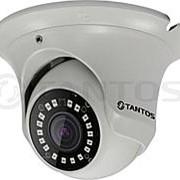 IP видеокамера уличная антивандальная с ИК подсветкой TSi-Ee50FP (3.6) фото