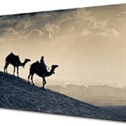 Картина на холсте 50х70 п366 фото