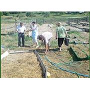 Семинары теоретические и практические по выращиванию, садоводству, озеленению фото