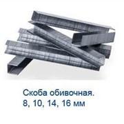 Скобы для обивки мебели ,скоба обивочная фото