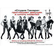 Буклеты флаера брошюры каталоги листовки воблеры Витебск фото