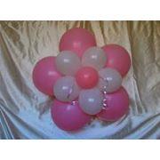 Оформление помещения фигурами из шаров оформление мероприятий воздушные шары заказать Запорожье Украина фото