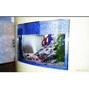 Оформление аквариумов. фото