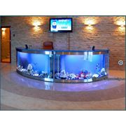 Подбор оборудования для аквариумов фото