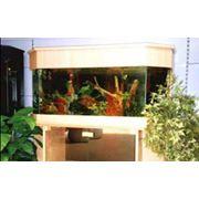 Аквариумы. Заказать аквариум. Расчет деталей для сборки аквариума. фото