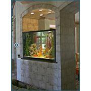 Расчет размеров аквариума фото