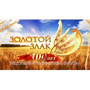 ЗОЛОТОЙ ЗЛАК | 100 лет Слуцкому хлебокомбинату. фото