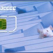 SIM-карты фото