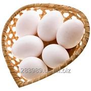 Chicken Eggs (White & Brown) фото