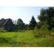 Фермерское хозяйство в Брестском регионе, 26 га. 122009 фото