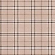 Ткань мебельная Жаккардовый шенилл Scotch pled wheat фото