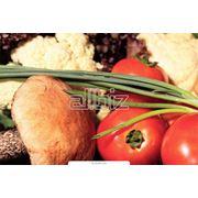 Доставка свежих овощей и фруктов оптом Киев свежие овощи и фрукты оптом Киев фото