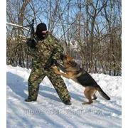 Собака телохранитель фото