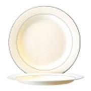 Тарелка обеденная 27 см RECEPTION фото