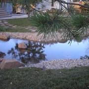 Ландшафтные работы по озеленению и cозданию искусственных водоемов фото
