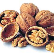 Закупка грецких орехов фото