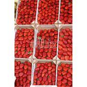 Закупка ягод Закупка ягод грибов орехов и др. фото
