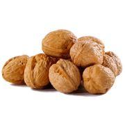 Переработка и реализации орехов покупка и продажа оптом грецких орехов фото