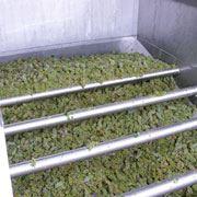 По переработке винограда изготовлению мелких и крупных партий виноматериалов. фото