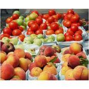 Переработка фруктов чернослива переработка плодов и фруктов чернослива продукты переработки фруктов чернослива Винница продукты переработки плодов и фруктов чернослива переработка овощей и фруктов Винница. фото