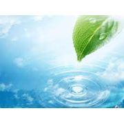 Разрешение на создание и размещение опасных отходов. фото