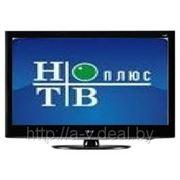 Спутниковое телевидение готовые комплекты оборудования НТВ+ЛАЙТ фото
