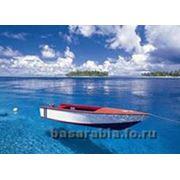 Ремонт лодок в Украине Купить Цена Фото Ремонт лодки фото