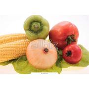 Услуги экспертизы и сертификации продуктов питания. Сертификация выпускаемой серийно продукции фото