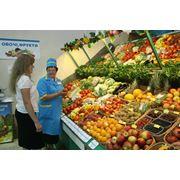 Экспертиза свежих плодов и овощей фото