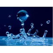 Химический анализ воды токсичность воды токсичность сточных вод. Киев фото