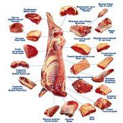 Доставка и оптовая продажа мяса фото