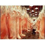 Мясопереработка фото