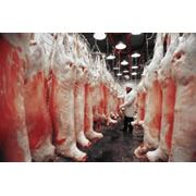 Переработка мясной продукции Переработка мясной продукции цена переработка мяса цех по переработке мяса продукты переработки мяса производство и переработка мяса фото