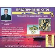 Услуги по переработке рыбной продукции фото