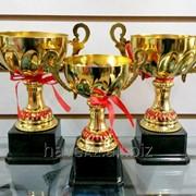 Набор кубков А (трофеи), наградные фото