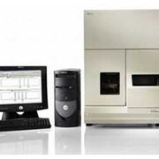 Генетические анализаторы ABI PRISM 310, Анализаторы генетические, Молекулярно генетическое оборудование, аналитическое оборудование, Анализаторы биохимические фото