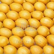 Лимоны от 1 тонны, в ящике 10кг фото