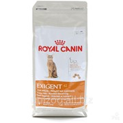 Сухой корм для кошек Royal Canin Exigent Protein 0,4 кг фото