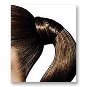 """Центр Здоровья Волос клиники """"Гиппократ"""" специализируется по лечению выпадения и роста волос, лечению кожи головы у мужчин и женщин в Киеве. фото"""