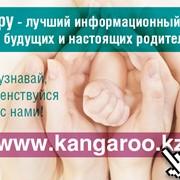 Реклама на портале Кенгуру фото