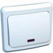 Выключатель одноклавишный с индикацией Этюд ВС10-005 скрытой проводки (Schneider Electric) фото
