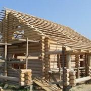 Балки деревянные, 6 м фото