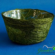 Корзина Диффенбахия травяная из сизаля 8*17 фото