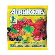 Грин Бэлт Удобрение Агрикола №8 для ягодных культур 50г фото