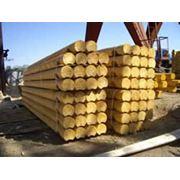 Бревна оцилиндрованные Оцилиндрованная древесина фото