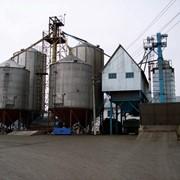 Отделение Бункеров Вентилируемое, ОБВ для хранения зерновых культур. фото