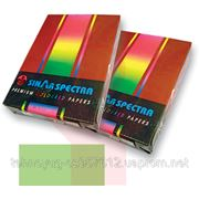 Бумага А4 Spectra Color - Lavender - лиловый. (1011410) фото